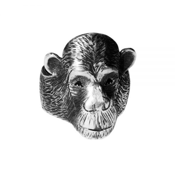 Michi Roman Anillo Chimpancé