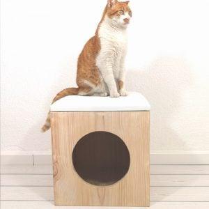 Fullmoon-catcube3