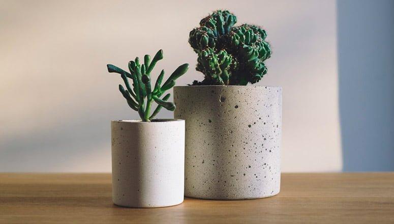 Cómo hacer macetas de cemento