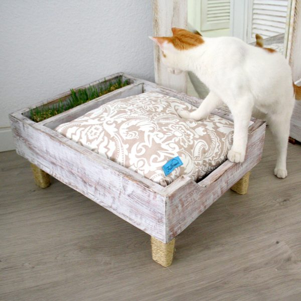 Fullmoon cama gatos 1